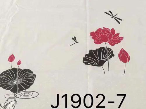J1902-7