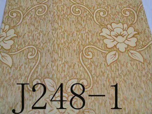 J248-1