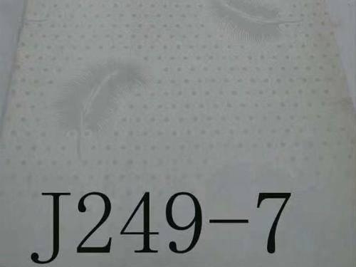 J249-7