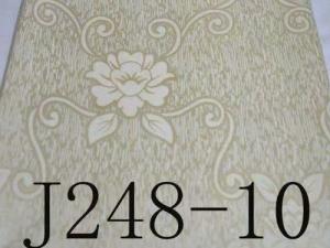 J248-10
